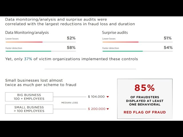 Stray Dot Employee Fraud and Embezzlement Analytics